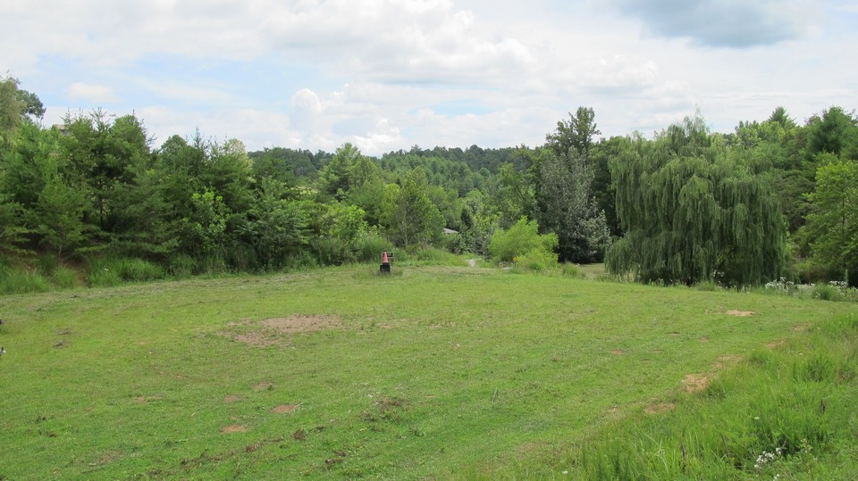 4 acres of pasture for horses